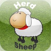 Herd Sheep